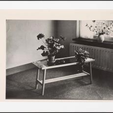 Rechthoekige houten salontafel met glasplaat uit begin jaren '50 - Pictura (fotografie), Paul de Nooijer