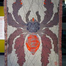 'Arachne's Web ', uit de serie 'Hypnopompic' - Kustaa Saksi, Textielmuseum (Josefina Eikenaar), Textielmuseum