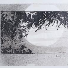 'Van de Pavert' - Pieter Wiegersma, Lange, Tommy de