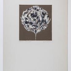 'Gevonden vogelveer' - Pieter Wiegersma, Lange, Tommy de