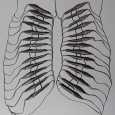 STIMULUS: cord reflexes, Subject R.F. - Bart Hess, Textielmuseum