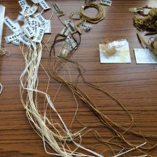 Plantaardig geverfde vezels voor het werk 'Vezels, bindingen en verfplanten' - kunstenaar, Nan Groot Antink, Textielmuseum, kunstenaar