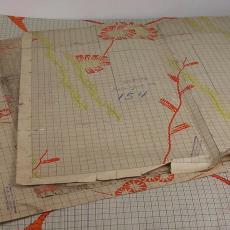 Patroontekening voor trijp met zeer uiteenlopende dessins - Textielmuseum (registratiefoto), Textielmuseum (registratiefoto), Textielmuseum (registratiefoto), Textielmuseum (registratiefoto), Eindhovensche Trijpfabrieken Schellens & Marto, Textielmuseum (registratiefoto), Textielmuseum (registratiefoto), Textielmuseum (registratiefoto)