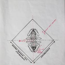 Ontwerp voor installatie 'Zonder titel' - Nederlands Textielmuseum, Alet Pilon