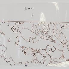 Ontwerptekening voor wandkleed 'Zonder titel' voor I.B.M. Nederland - Textielmuseum (registratiefoto), Textielmuseum (registratiefoto), Wil Fruytier